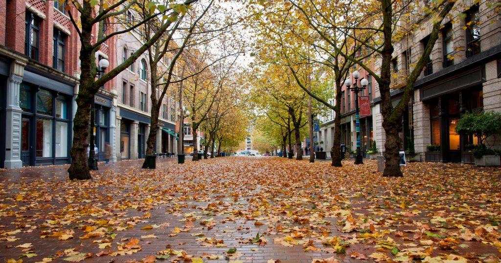 Seattle's Pioneer Square Area